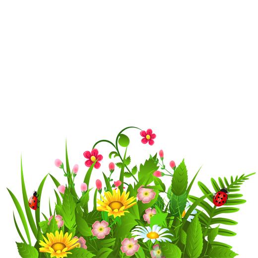 طرح گل و بوته رنگی
