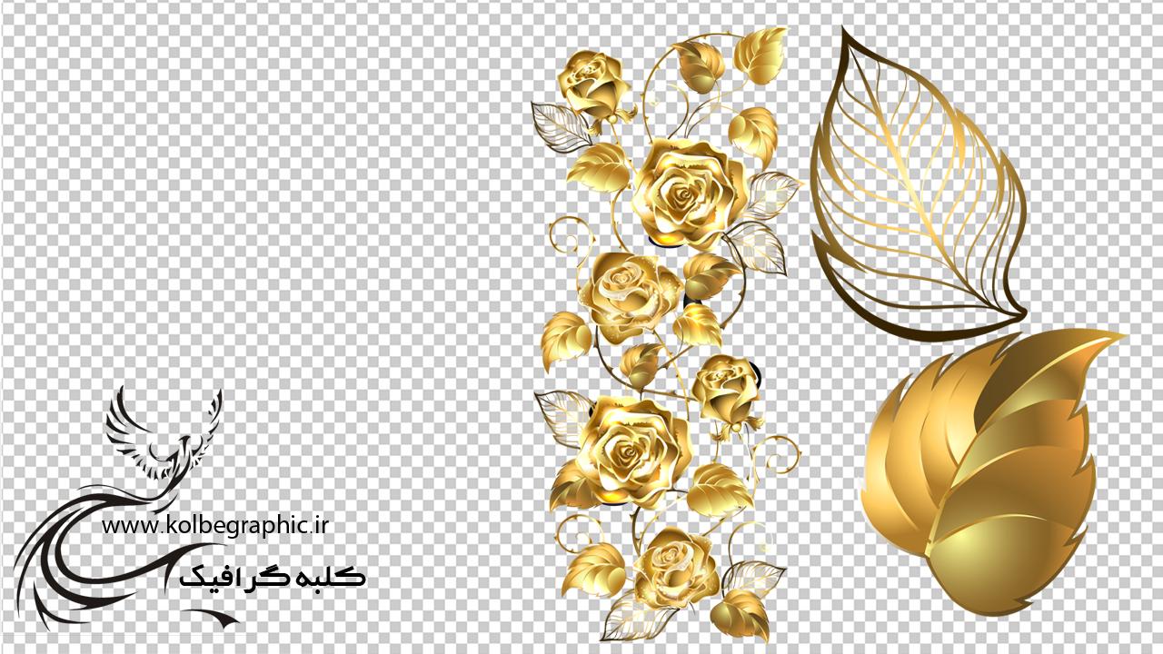 تصویر با کیفیت گل رز طلایی